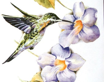 Hummingbird  Huge Image on Womans T Shirt Size M L XL 2XL Free Shipping to USA