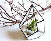 Small Geometric Terrarium Pod, Air Plant Glass Terrarium, Glass Planter