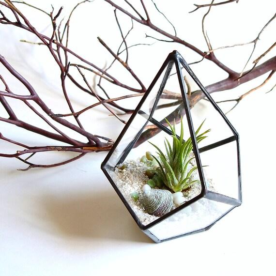 articles similaires petit terrarium g om trique air. Black Bedroom Furniture Sets. Home Design Ideas