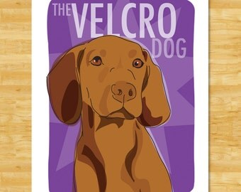 Vizsla Art Print - The Velcro Dog - Dog Pop Art Prints Hungarian Vizsla Gifts