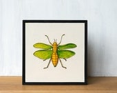 Insect Art Original Painting - Katydid, framed