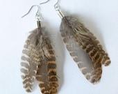 Woodcock Feather Earrings