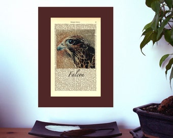 Falcon Wildlife Artwork Print on Antique 1896 Dictionary Book Page