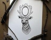 White Deer - Intricate Whimsical Wildlife ink drawing - 8 1/2 by 11 Print