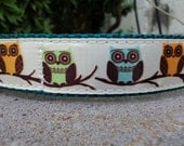 """Sale Dog Collar 1"""" width adjustable Side Release buckle Calling All Owls - martingale style is cost upgrade"""