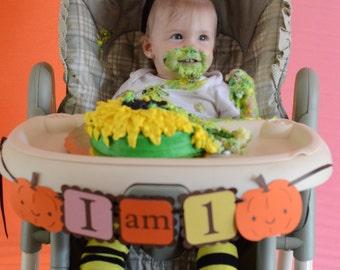 Pumpkin I AM 1 banner, girl birthday decorations, girl party, boy party, sweet pumpkin,