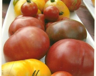 Food Photography Heirloom Tomato Platter Blank Note Card - Kitchen Art - Summer Bounty - Colorful Tomatoes