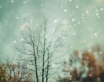 """Snow Photography - Tree Photography - Dreamy and Vintage Inspired - Blue Aqua -  Fine Art Photograph - """"First Snowfall"""""""