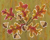 "Collage, acorns, leaves, autumn, fall, oak,  8 x 10 Limited edition print 1/250 ""Acorns and Leaves"" - TammyOlson"