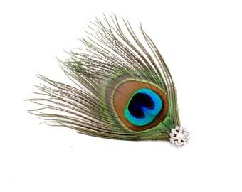 Wild - Peacock feather fascinator / Peacock hair clip / Feather hair accessory