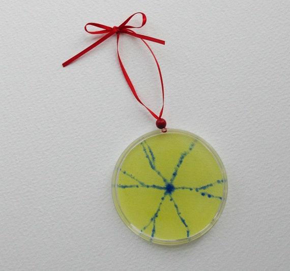Petri Dish Ornament G12: Spiny Neuron