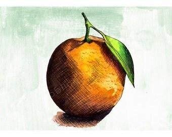 DIGITAL Orange illustration-postcard sized instant download of original ink and watercolor illustration