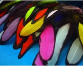 50 Matched Hen Feathers Laced Chicken Feathers All Colors Included Dyed Jewelry Feathers 25 Pairs Feathers for Earrings Jewelry Making DIY