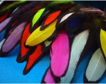 Small Feathers Matched Pairs Earring Feathers Dyed Red Orange Yellow Green Blue Purple 50Pack 25 Real Feathers for Making Earrings