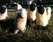 Homemade plush sheep looking for a good home