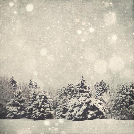 https://www.etsy.com/listing/85944891/winter-art-snow-globe-8x8-fine-art