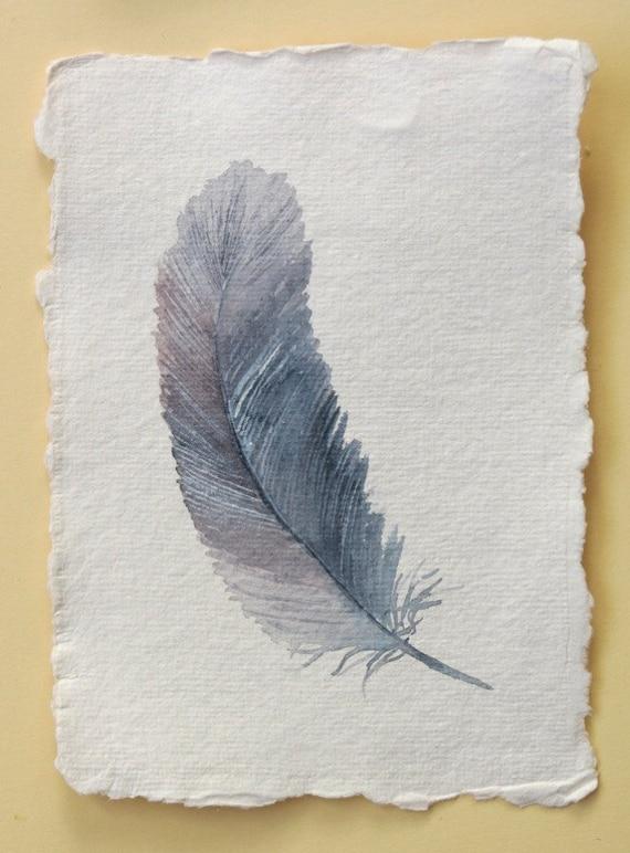 Watercolour feather original painting illustration study bird series set