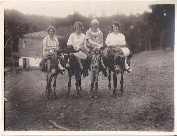 Side Saddle on Mules,  Vintage  Photo, Photograph