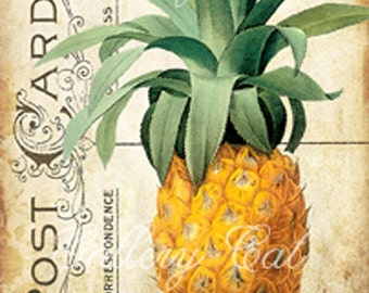 PINEAPPLE TAGS Digital Collage Sheet Instant Download Paper Crafts Labels Gift Tags Cards Friendship Symbol Fruit by GalleryCat CS169