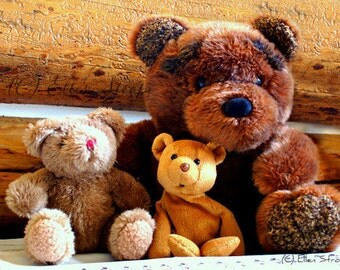 PHOTO note card, bears, stuffed toys, stuffed bears, bear decor, paper goods, Ellen Strope, cabin decor, children, children decor, cards