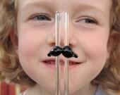 Mustache Straw- Reusable Glass