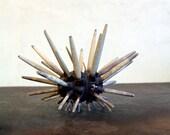 Sea Urchin / Vintage Club Sea Urchin