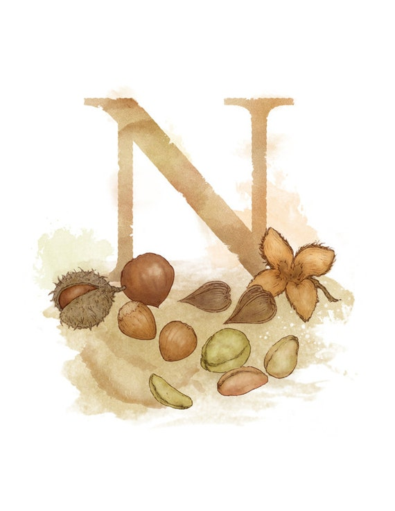Letter n nut nature theme alphabet art decor by for Letter n decorations
