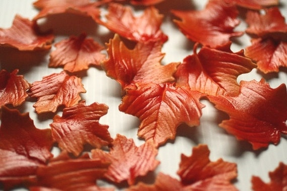 Cake Decorating Fall Leaves : 12 Gumpaste Autumn Leaves for cake decorating by ...