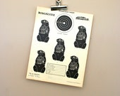 Vintage Original 1950s Woodchucks Paper Shooting Target with Stamp