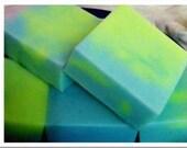 BEACH Whisperer SOAP in Ocean Air, Sea & Sand River Girls  Blue Green Large  (1)
