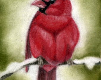 Winter Cardinal- a pastel drawing from artist Wendy Leedy's wildlife collection- fine art print, signed