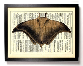 Manta Ray, Ocean, Home, Kitchen, Nursery, Bathroom, Office Decor, Wedding Gift, Eco Friendly Book Art, Vintage Dictionary Print, 8 x 10 in.