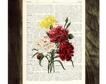 Summer Sale Wall art Vintage Illustration Carnations bouquet  collage Print on Vintage Book page- Home wall decor BFL047