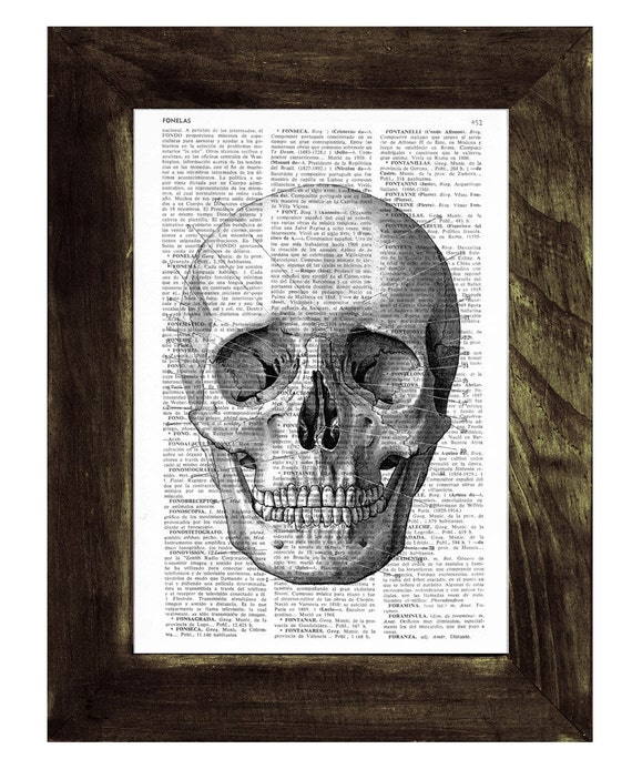 Skull print on a sheet from dictionary-simple skull book print SKA011