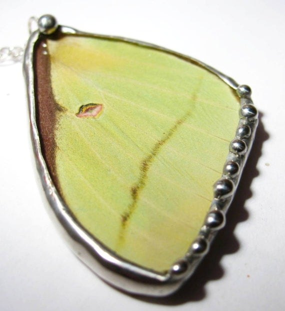 Womens Real Recycled Luna Moth Wing Necklace