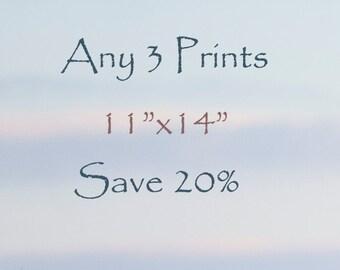 "20% off - Select any Three 11""x14"" fine art horse prints - photograph - horse art"
