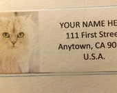 White Cat Return Address Label