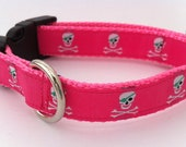 Preppy Pink Pirates 5/8 Inch Narrow Adjustable Collar