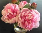 Fine Silk Floral Arrangement Faux Pink Peonies x3 In Round Vase with Illusion Faux Water