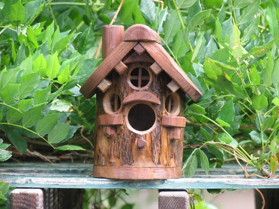 Black Walnut  Bird House 4