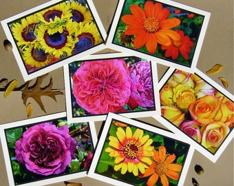 Bold Autumn Flowers Note Cards - Spicy Set of Six