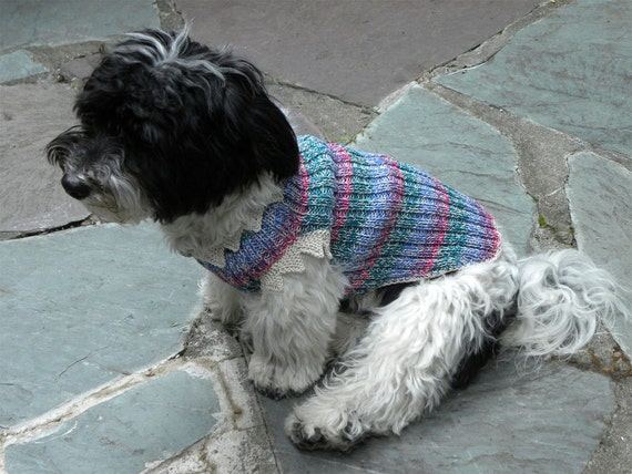"The ""Maxine"" style is a super-stretchy, ribbed pet sweater that's hand-knit in a lighter weight 100% pima cotton twist yarn"