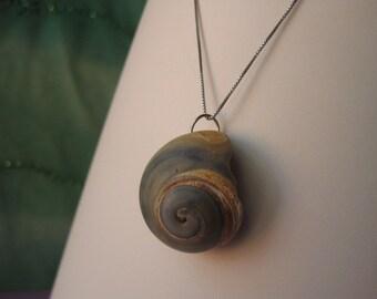 Gray and Orange Spiral Moon Seashell Pendant