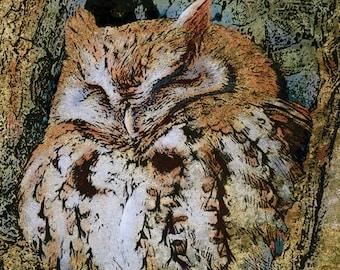 Owl Print - Owl Decor - Owl Art - Bird Art - Bird Prints - Bird Wall Art - Bird Painting - Limited Edition Giclee Print