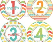 Monthly Baby Stickers, Milestone Stickers, Baby Month Stickers, Monthly Bodysuit Sticker, Monthly Growth Stickers Neutral (Circus)