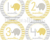 Monthly Baby Stickers, Milestone Stickers, Baby Month Stickers, Monthly Bodysuit Sticker, Yellow and Gray (Elephants Gender Neutral)