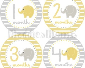 Monthly Baby Stickers Baby Month Stickers, Monthly Bodysuit Sticker, Yellow and Gray (Elephants Gender Neutral)
