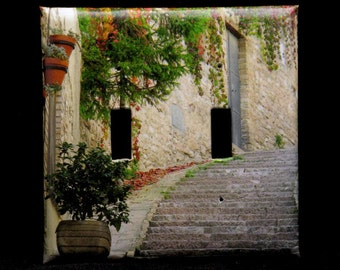 Double Switchplate Cover - Steps and Red Ivy in Assisi Italy