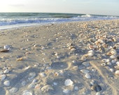 Collection of Beach Images, Sanibel and Captiva, Florida