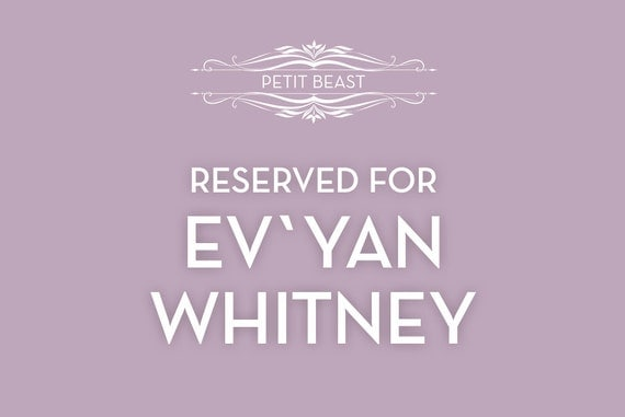 RESERVED Order for EvYan Whitney